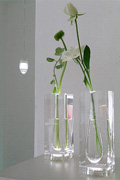 Vase Light series
